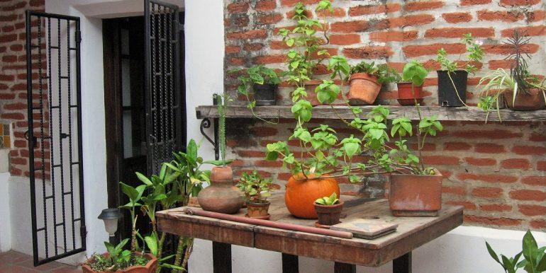 Casa Centro Historico 010 (13)