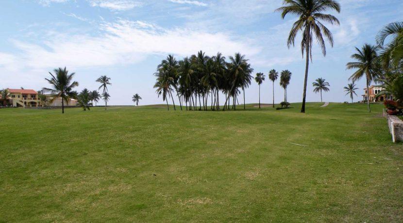 Terreno IsladelaPiedra (3)